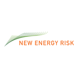 New Energy Risk