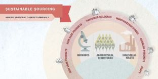 Sustainable sourcing infographic from Biotechnology Innovation Organization