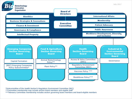 Board and Committee structure