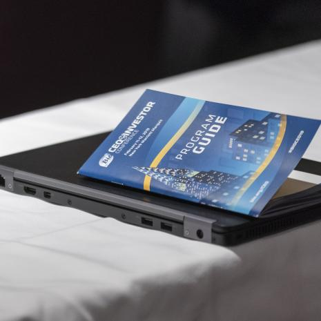 CEO Program on a laptop