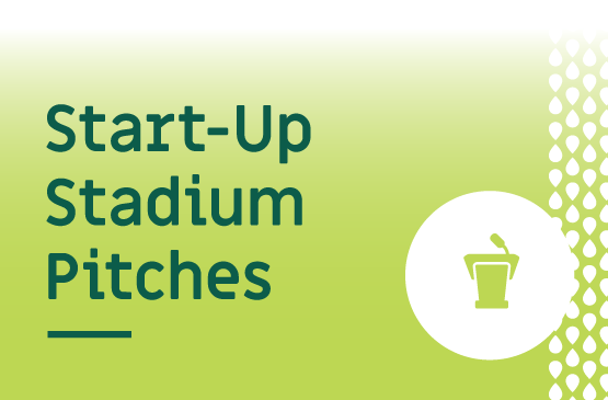 Start-Up Stadium Pitches