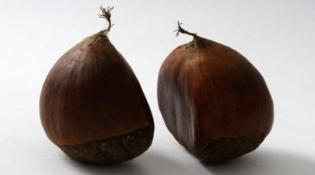 Two chestnuts