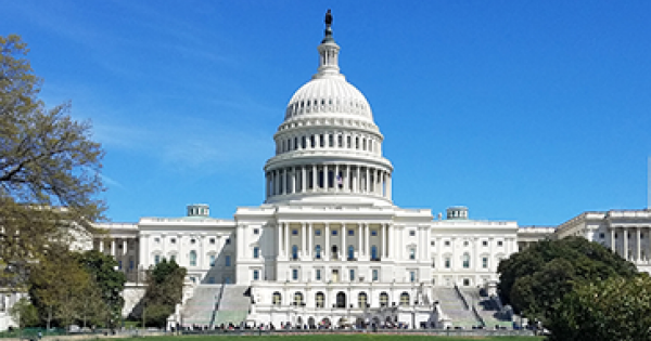 What to expect from the 117th Congress