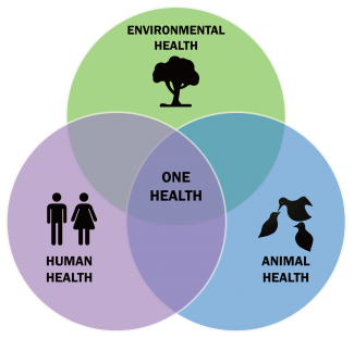 One Health Concept: Animal Health, Environmental Health and Human Health